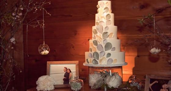 Gorgeous Sonoma Wedding