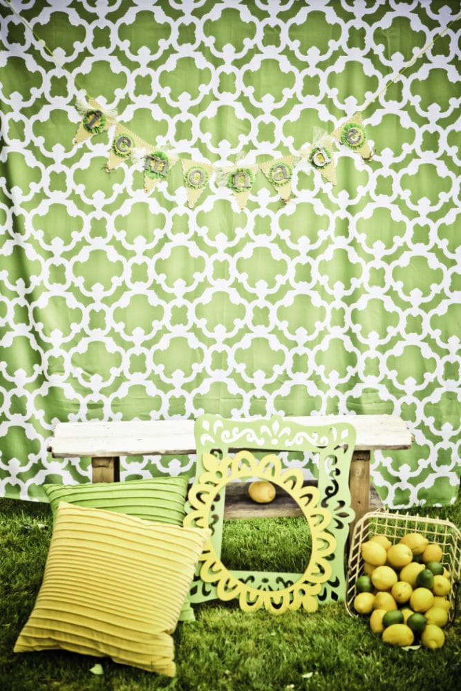 Vintage Lemon and Lime Birthday Party Photo Booth