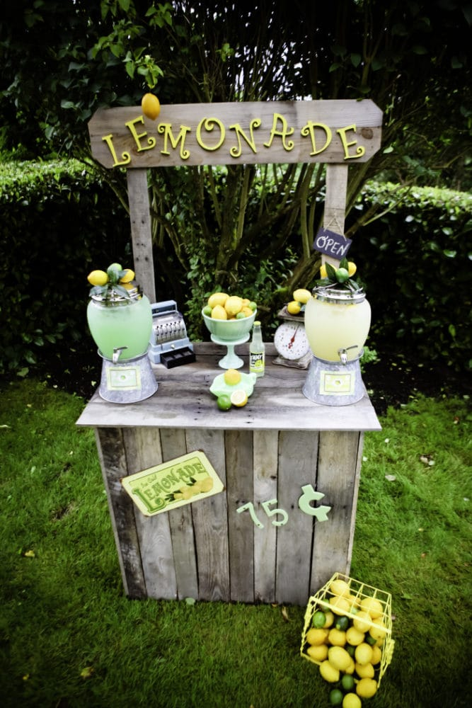 Vintage Lemon and Lime Birthday Party