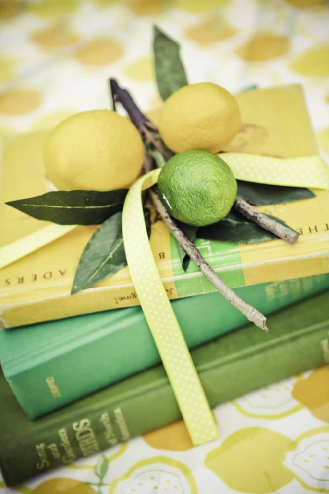 Vintage Lemon And Lime Party