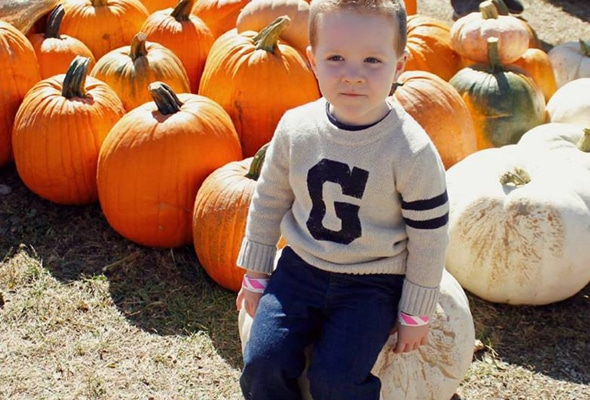 Gerber Baby Photo Search