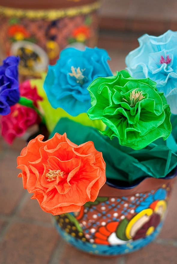 colorful-fiesta-flowers