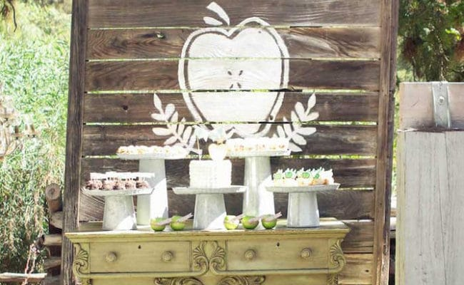 Apple of My Eye Baby Shower