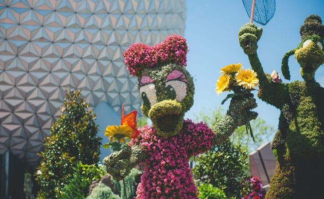 Disney World Birthday Celebration