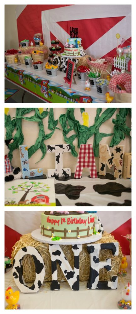 farm-themed-1st-birthday-3
