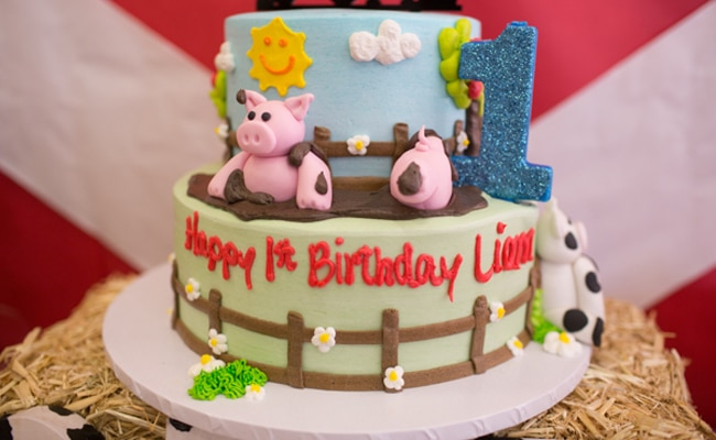 Farm Themed First Birthday Party - Pretty My Party - Party Ideas