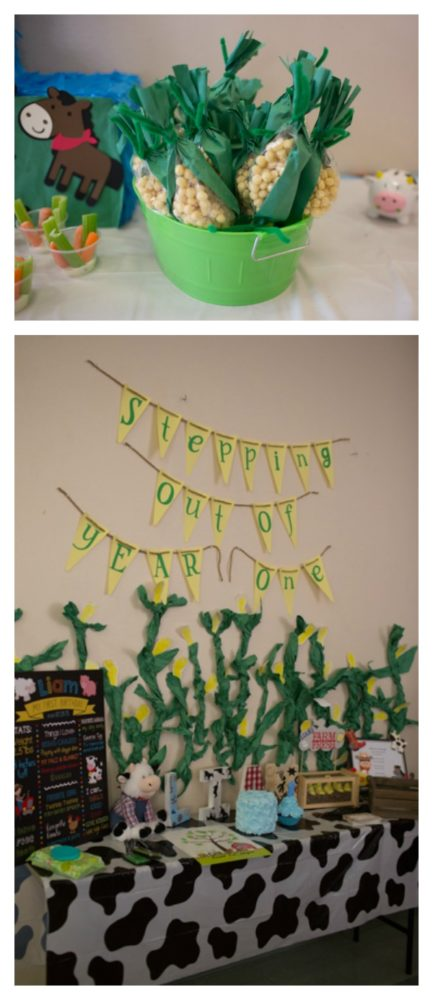 farm-themed-1st-birthday-party-4