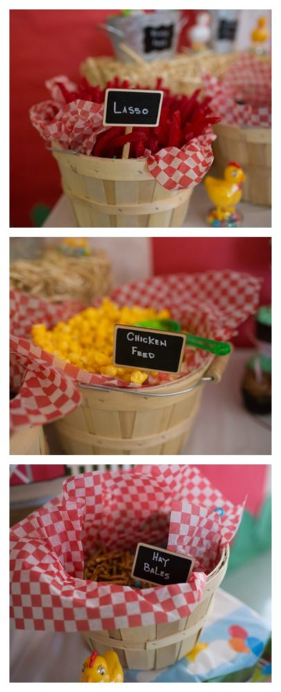 farm-themed-1st-birthday-party-6