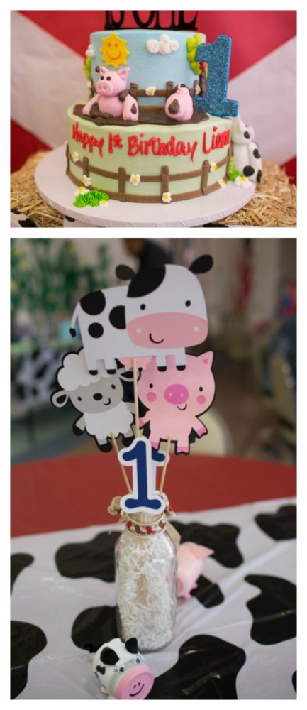 farm-themed-birthday-party-6