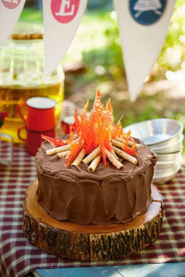 Campfire Cake, 21 Sizzling Summer Birthday Cake Ideas | Pretty My Party