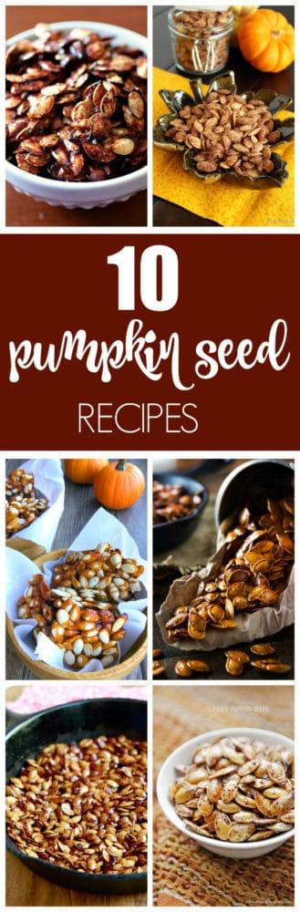 10 Best Pumpkin Seed Recipes via Pretty My Party