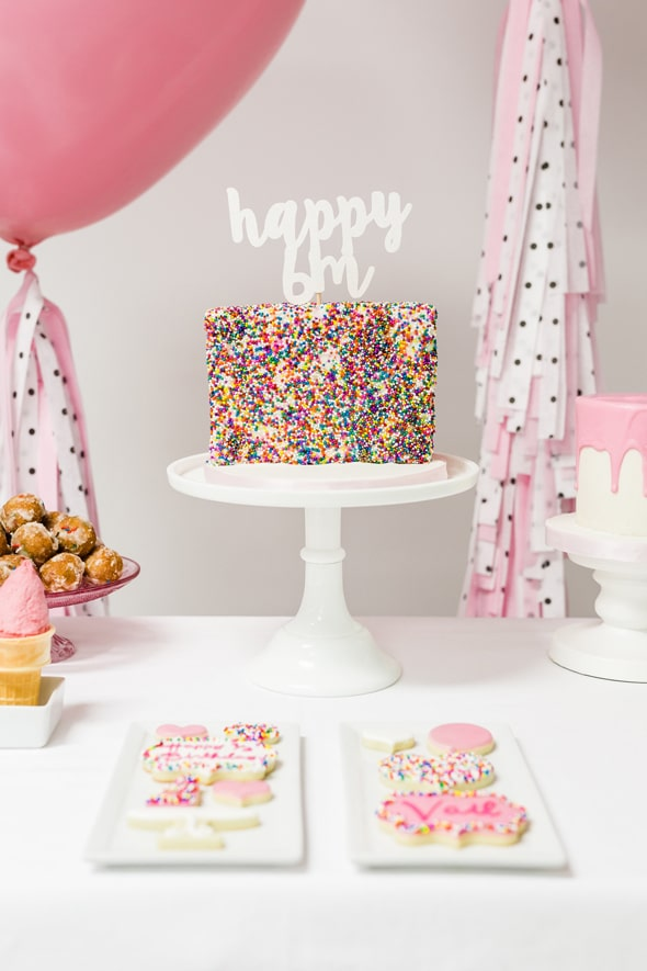 Little Sprinkles Birthday Fun Cake | Pretty My Party