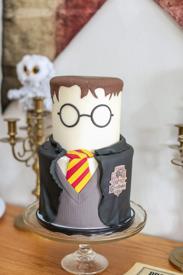 Harry Potter Themed Birthday Cake | Pretty My Party