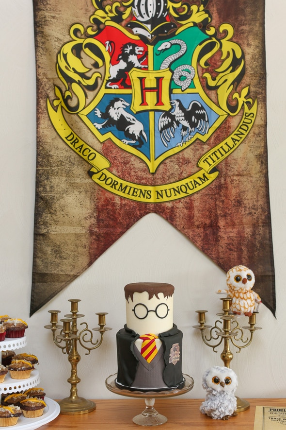 Harry Potter Themed Birthday Party | Pretty My Party
