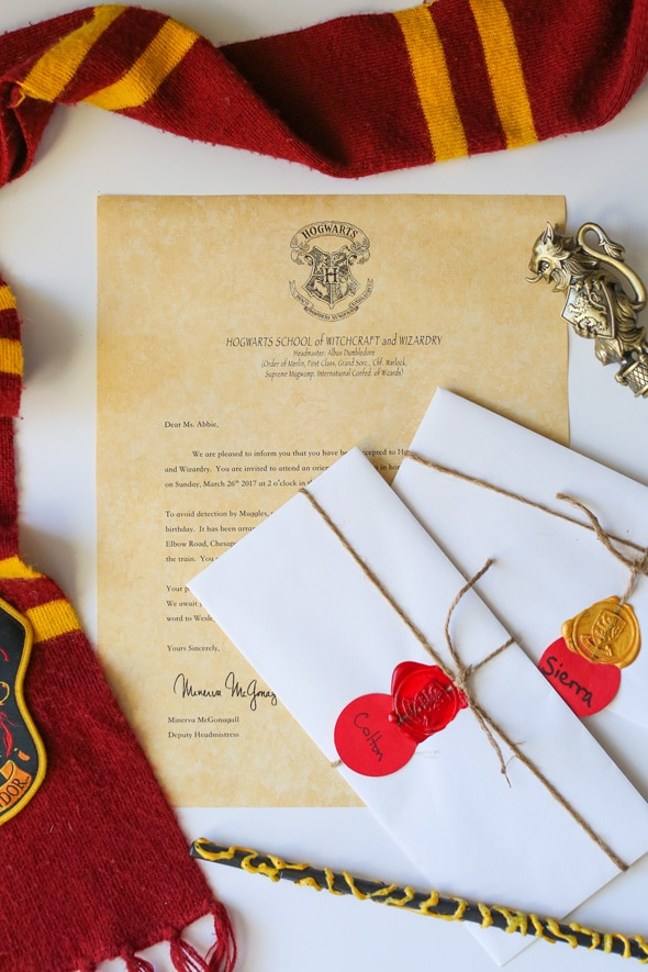 Harry Potter Themed Party | Pretty My Party