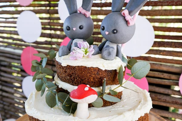 Twin Bunnies Baby Shower