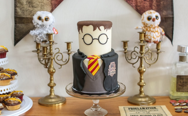 Harry Potter Birthday Celebration