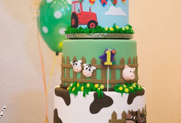 Farmyard Ranch First Birthday Party