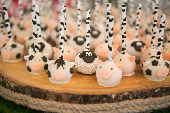 Farmyard Ranch First Birthday Party | Pretty My Party
