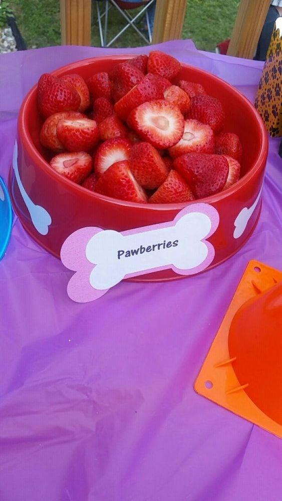 21 Skye Paw Patrol Party Ideas - Pretty My Party