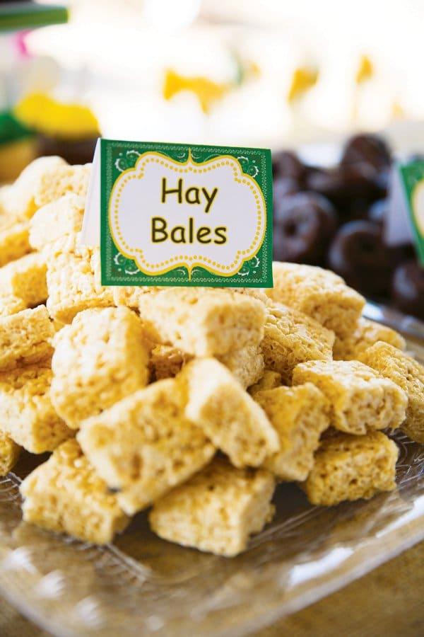 John Deere Hay Bales | Pretty My Party