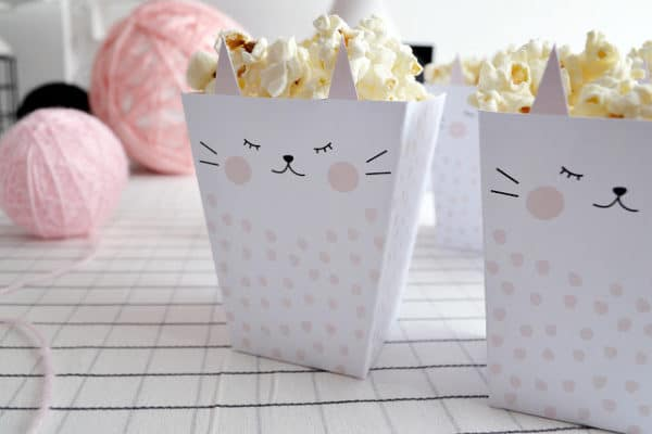 Kitty Cat Popcorn Boxes | Cat Party Ideas