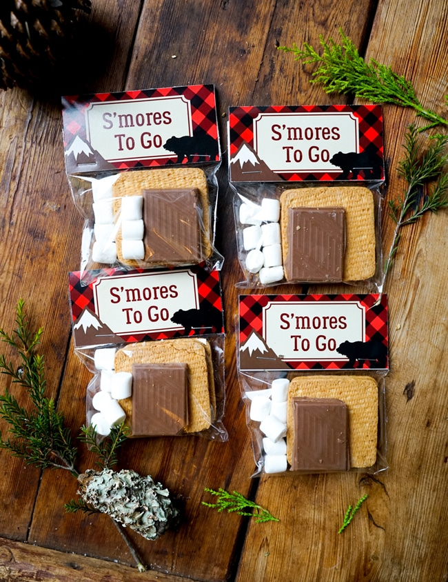Lumberjack S'mores Party Favors