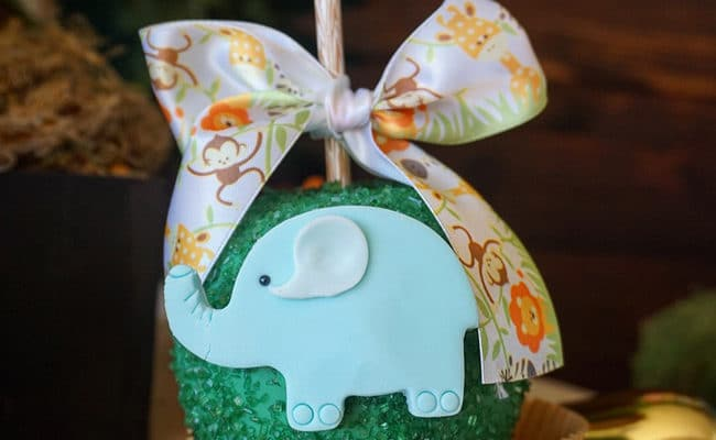 Animal Safari Themed Baby Shower