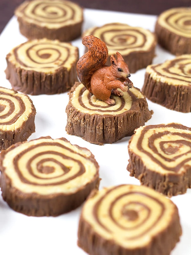 Fudge Tree Ring Recipe | Lumberjack Party Ideas