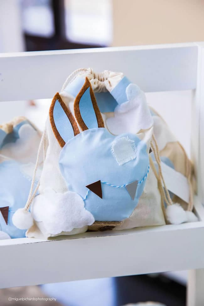 Boy's Hot Air Balloon First Birthday Party Favors
