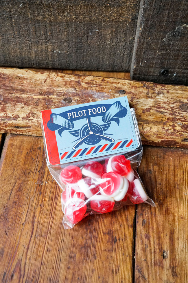 Vintage Airplane Birthday Party Pilot Food Candy