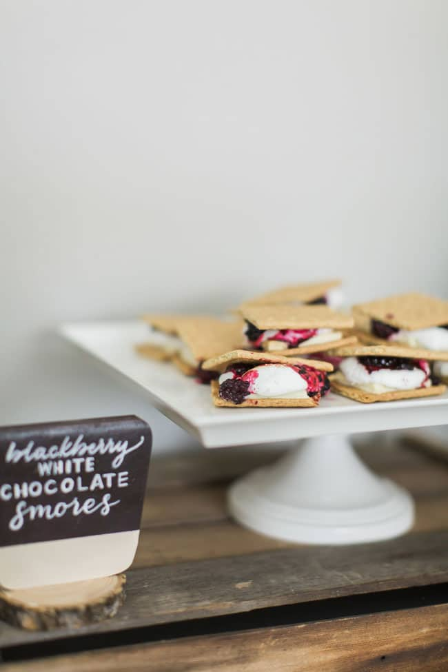 National Park Baby Shower Blackberry White Chocolate Smores