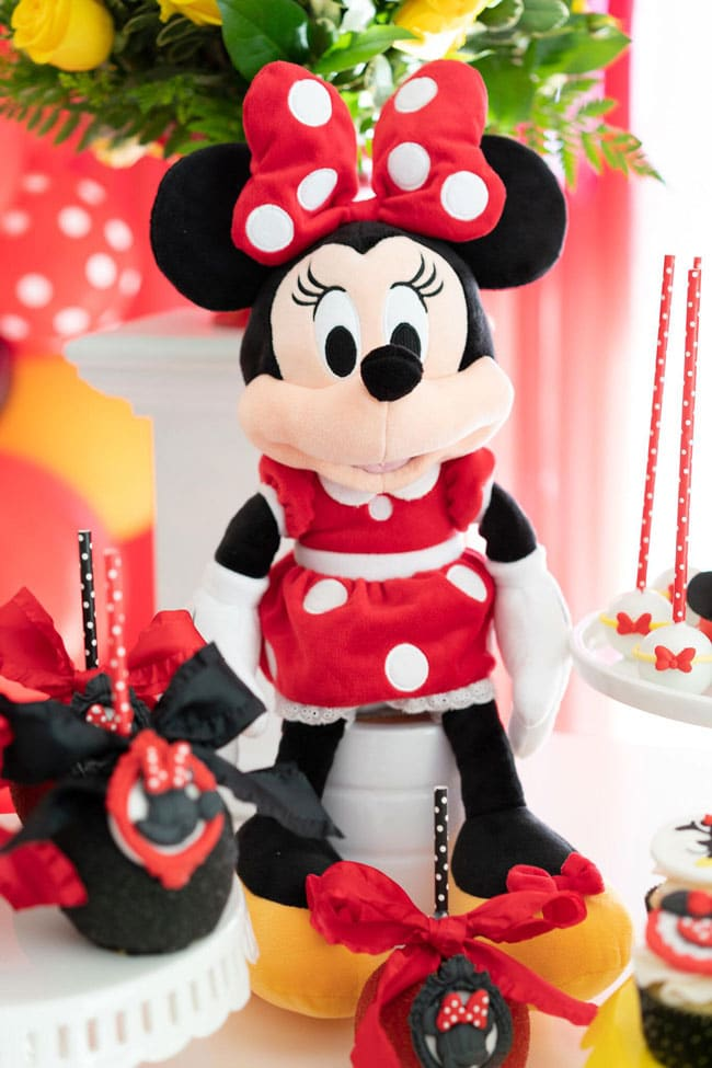 Minnie Mouse Birthday Decorations