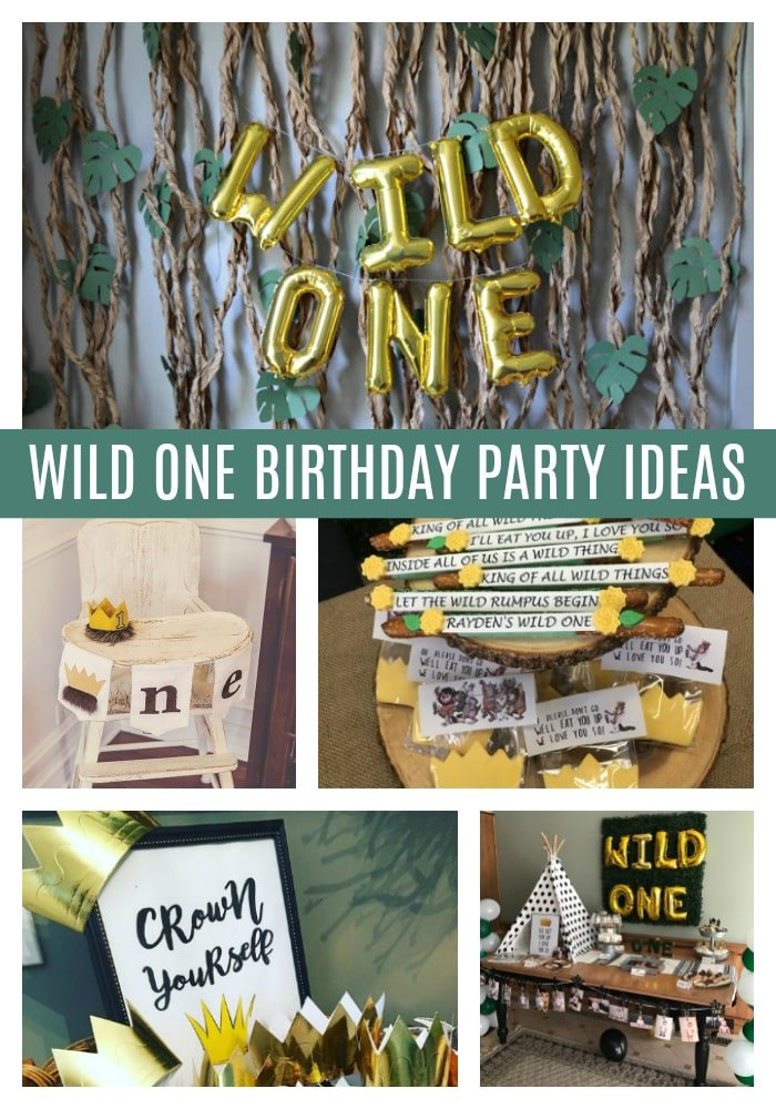Best Wild One Party Ideas on Pretty My Party