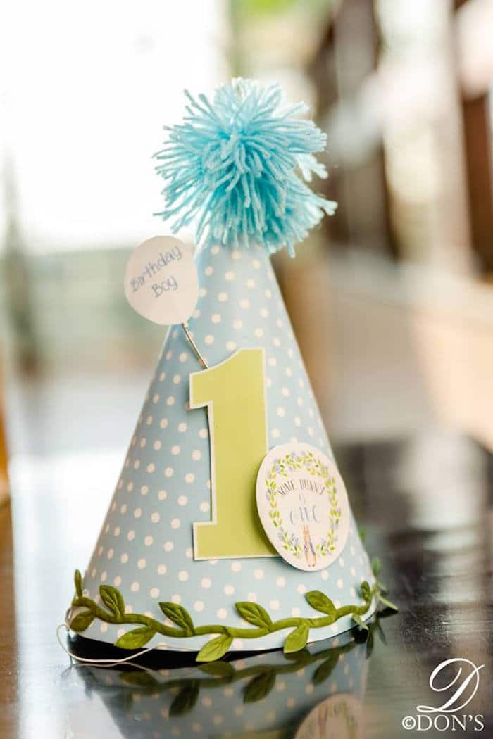 Peter Rabbit First Birthday Party Hat