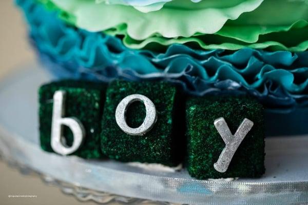 Elephant Baby Boy Shower Cake Details