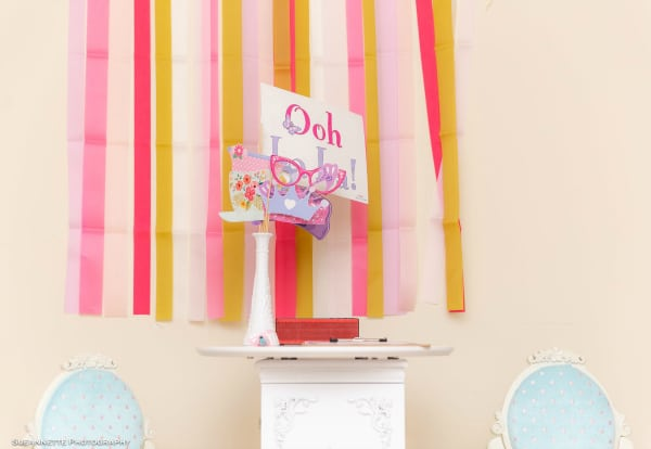 Fancy Nancy Party Photo Booth Props