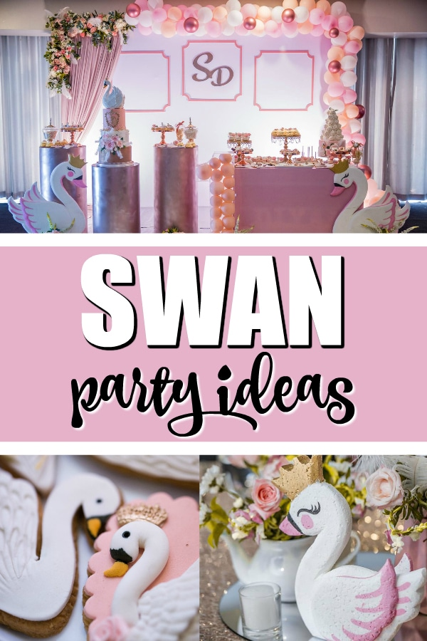 Pretty Pink Swan Birthday Party on Pretty My Party