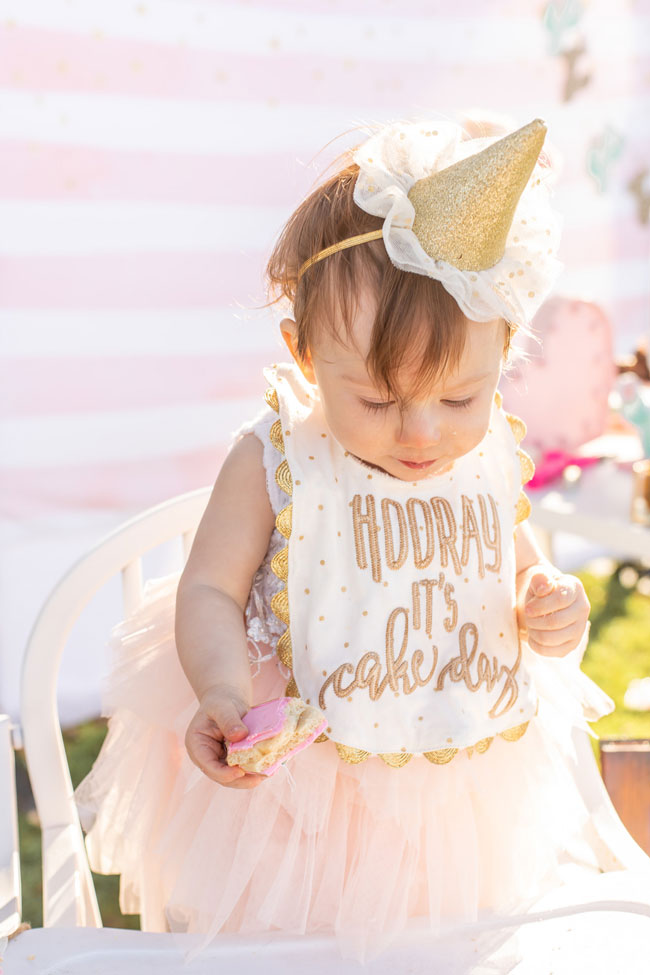 Cactus Themed First Birthday Party Hat and Outfit