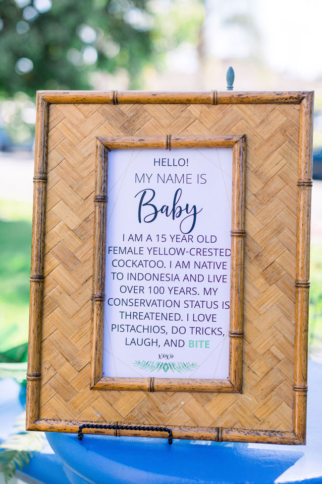 Wild One Tropical Baby Shower Idea