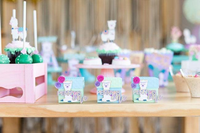 Llama Birthday Party Decorations