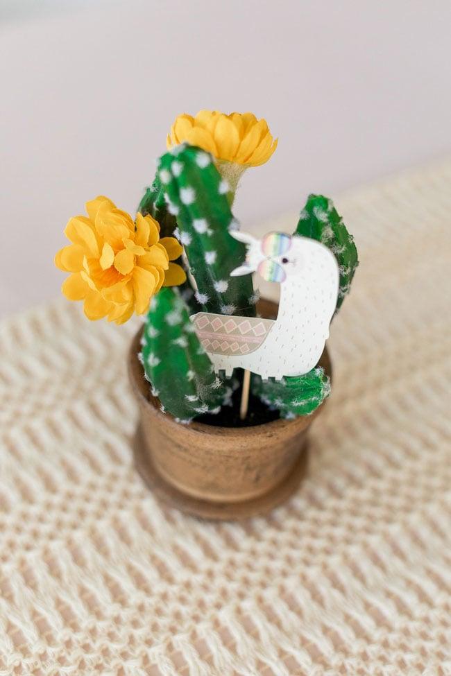 Llama and Cactus Decoration